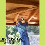 Συντήρηση ξύλου για σαράκι με ειδικό gel και μηχανισμό πιστολέτου